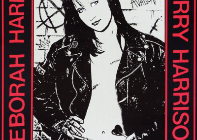 3/8/1990 Irvine Meadows